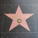 800px-Arnold_Schwarzenegger's_star_on_the_Hollywood_Walk_of_Fame