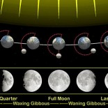 800px-Moon_phases_en